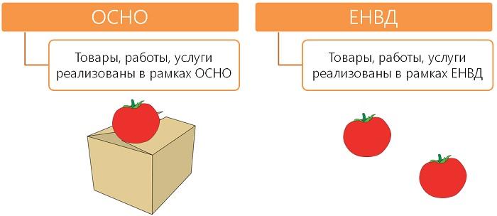 раздельный учет доходов ЕНВД и ОСНО
