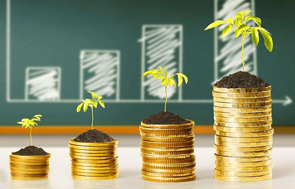 Как отразить выплату дивидендов в учете и удержать НДФЛ