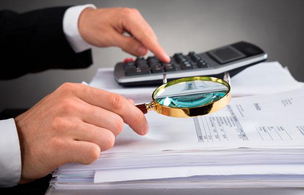 Какие документы требует налоговая при проверке