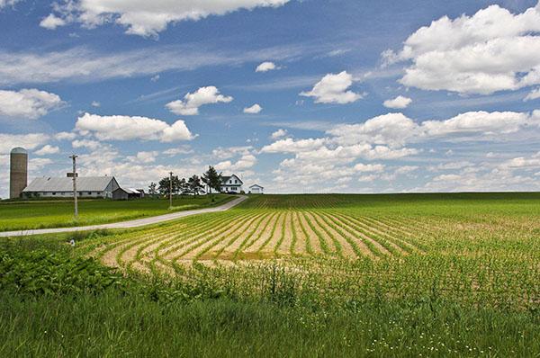 Учет и налогообложение земельных участков